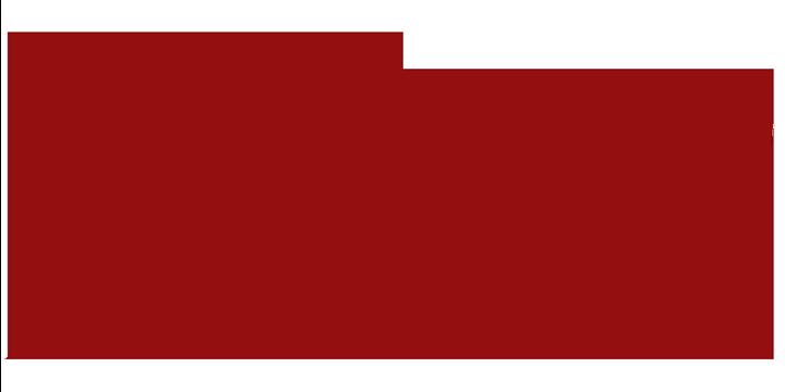 flavcity-logo-720